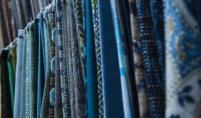 Zander's Move - Blue Fabric